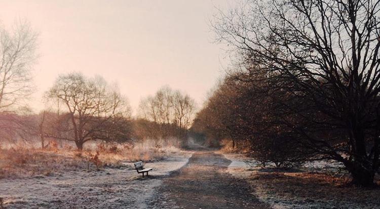 Fotografia Krajobrazowa Ewy Mizgały