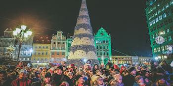 Choinka na rynku we Wrocławiu