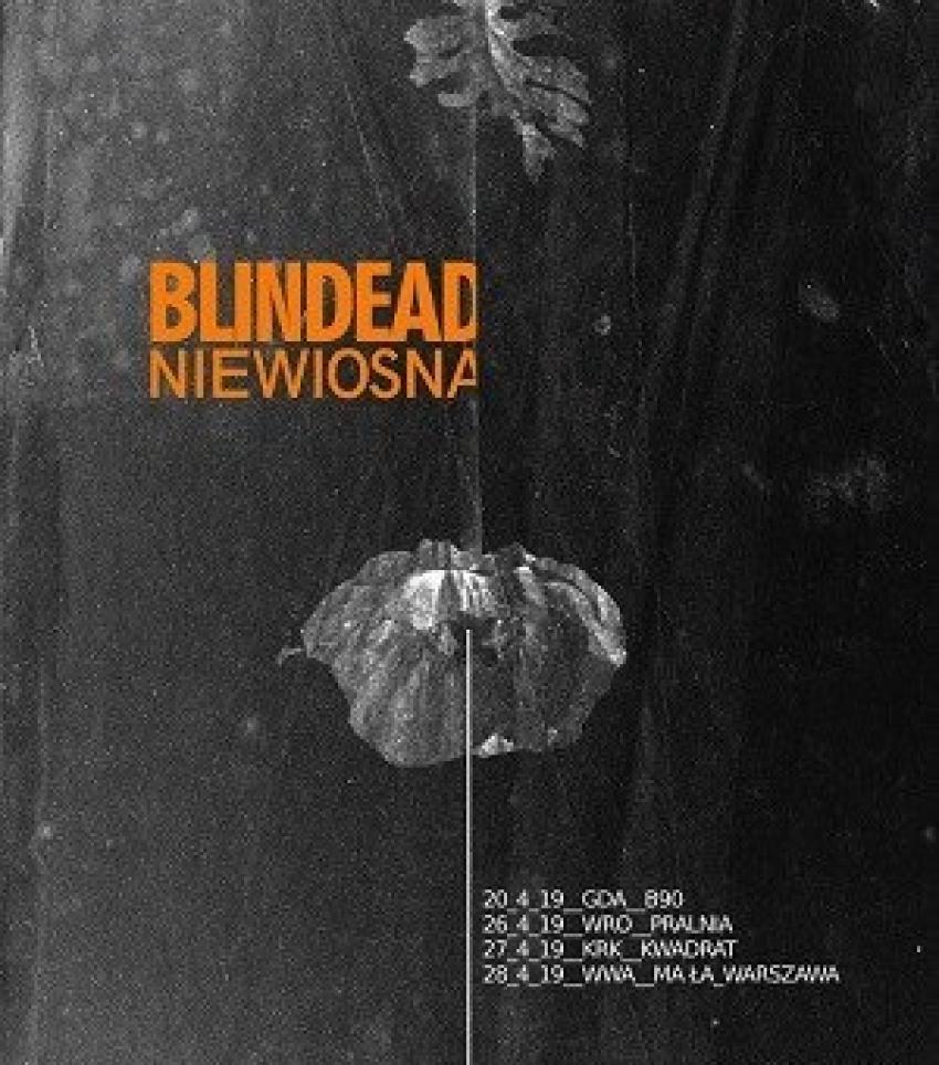 Blidead_Niewiosna