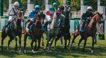 Wyścigi konne na wrocławskich Partynicach
