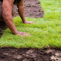 Przygotowanie domu i ogrodu na wiosnę – od czego zacząć?