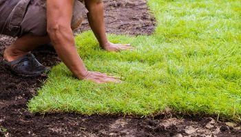 Przygotowanie domu i ogrodu na wiosnę – od czego zacząć? [fot. materiały prasowe]