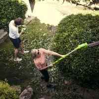 Jak przygotować ogród na zimę? Oto o czym należy pamiętać!
