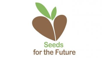 """Seeds for the Future Polska"" - ruszyła IV edycja konkursu HUAWEI"