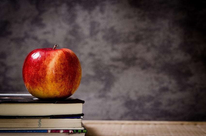 Tanie podręczniki szkolne. Czy warto kupować używane książki?